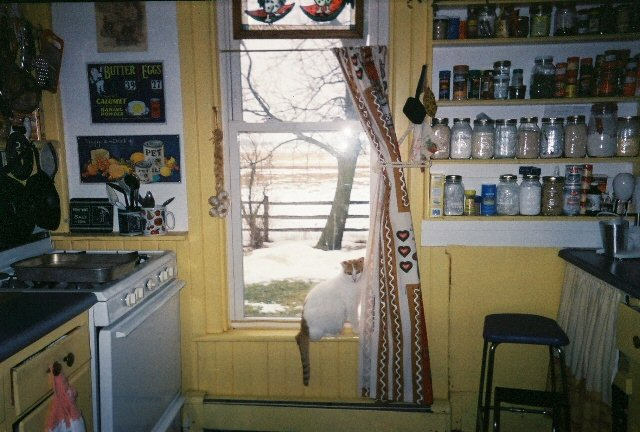 My kitchen in Morenci, MI
